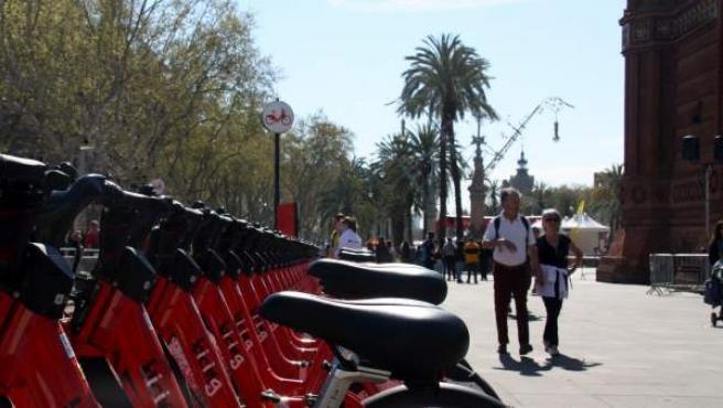 Bicicletas del nuevo servicio de Bicing de Barcelona en el Passeig Lluís Companys.
