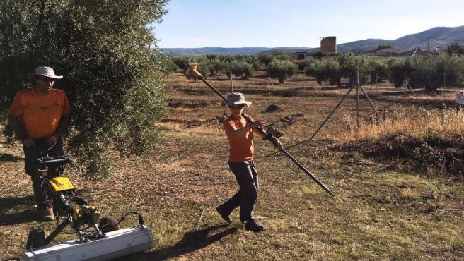 Trabajos con georradar en la zona arqueológica de Fuente del Álamo