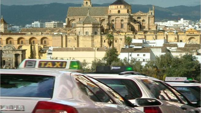 Imagen de taxis en Córdoba