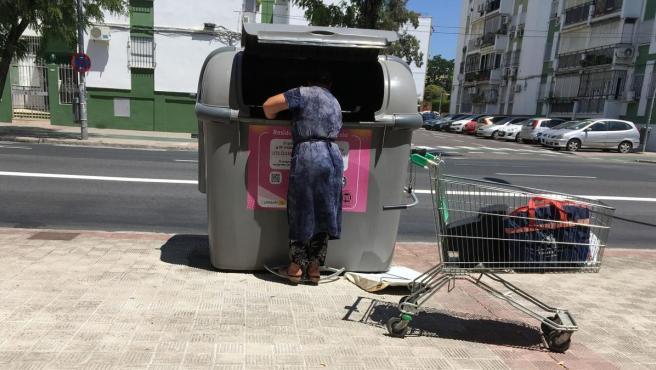 Una persona busca en un contenedor en una localidad andaluza.