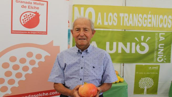 Gaspar Agulló gana el concurso de la granada mollar más bonita de España