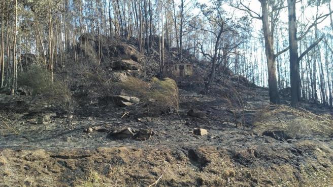 Zona quemada en un incendio en Chandebrito.