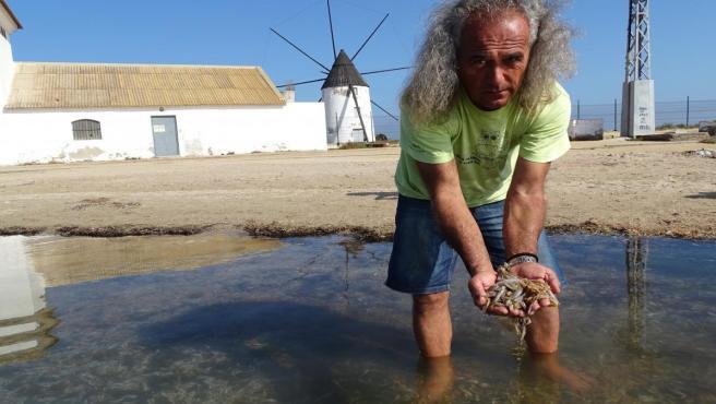 Pedro García de ANSE, recogiendo peces muertos en el Mar Menor