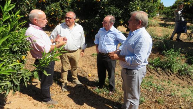 El delegado de Empleo en Huelva, Antonio Augustín, se reúne con el sector de los cítricos.
