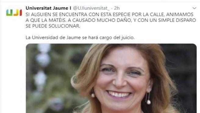 Amenazas a Amparo Marco desde la cuenta hackeada de la UJI