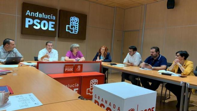 Ejecutiva Provincial del PSOE de Granada