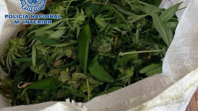 Parte de la marihuana incautada por la Policía Nacional en Córdoba.