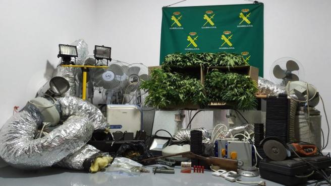 La Guardia Civil de Lugo detiene a cuatro personas por una plantación de marihuana.