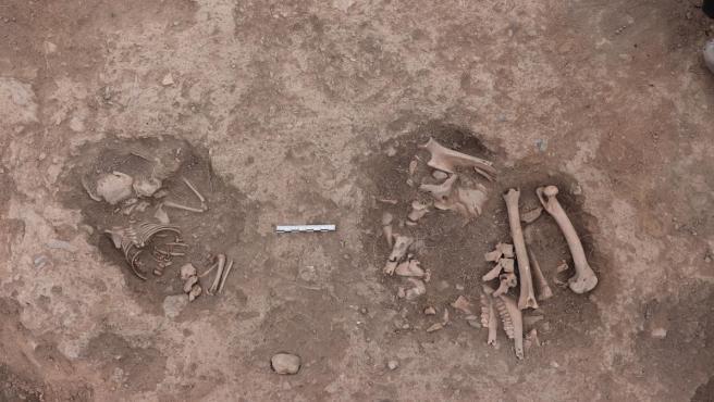 Restos de un bebé y de un ovicáprido en el Cerro Tormejón, ubicado en Armuña (Segovia).