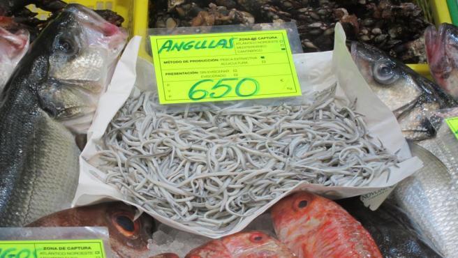 Angulas de pescadería de Bilbao