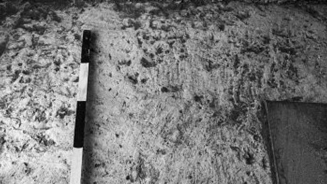 El pavimento de la calle y los cimientos sólidos que quedaron expuestos en un lugar donde no hay adoquines.