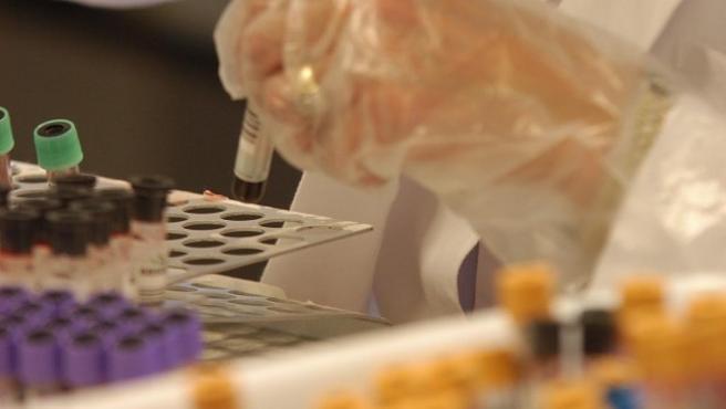 Np Investigación Fibrosis Quística / Día Mundial 8 De Septiembre