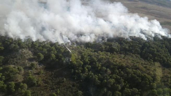 Incendio en Peñaflor.