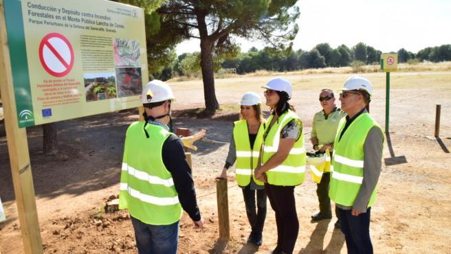 Granada.- Cortes intermitentes en la carretera de acceso al Llano de la Perdiz por obras contra incendios forestales