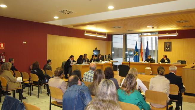 Imagen de la vista celebrada contra el acusado de la muerte de su pareja, Silvia Hernández, fallecida en 2016 en su domicilio en Gijón.