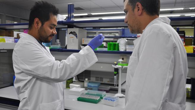 Investigadores del IBV (CSIC) y de Fisabio