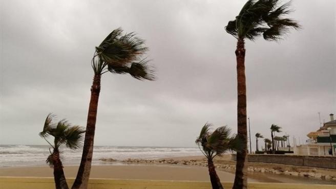 Efectos de las fuertes rachas de viento en una imagen de archivo