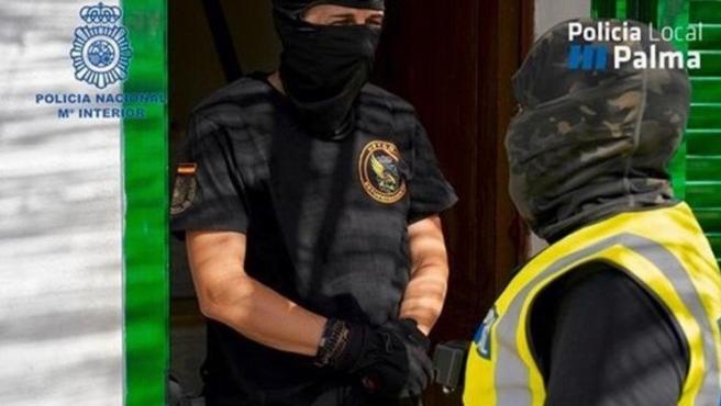 Policía Nacional y Local de Palma en una operación contra el tráfico de droga