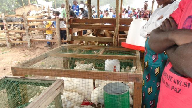 Comercio de productos en Muambula (Mozambique)