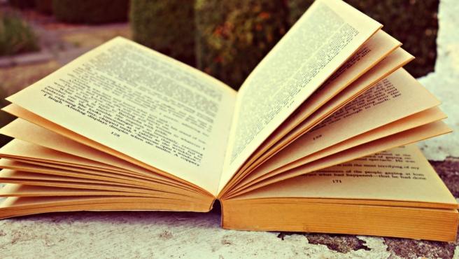 Imagen de recurso de un libro