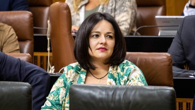 La presidenta del PP de Sevilla, Virginia Pérez, en una imagen de archivo