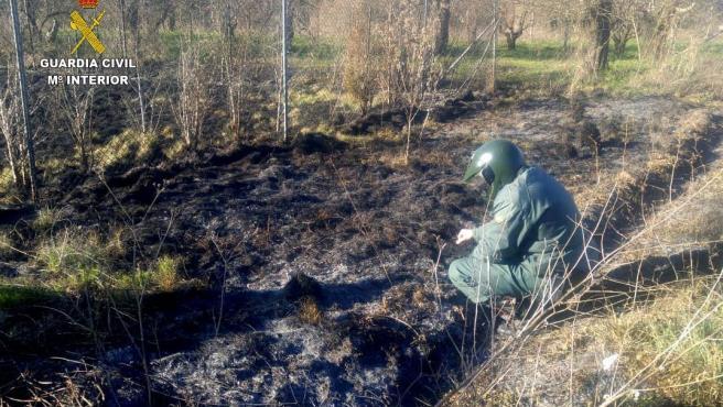 Agente del Seprona analiza uno de los incendios forestales en la provincia de León.