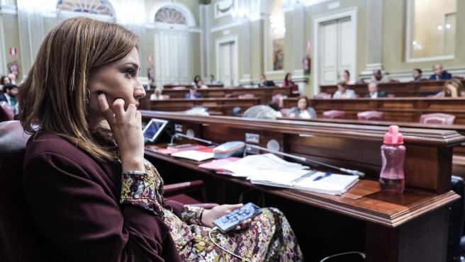Nira Fierro, vicesecretaria de Acción Política del PSOE Canarias