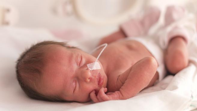 La nutrición de los bebés prematuros es clave para evitar trastornos neuropsicológicos.