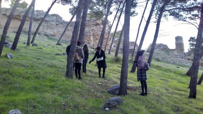Reforestación del sendero islámico del Castillo de Santa Catalina