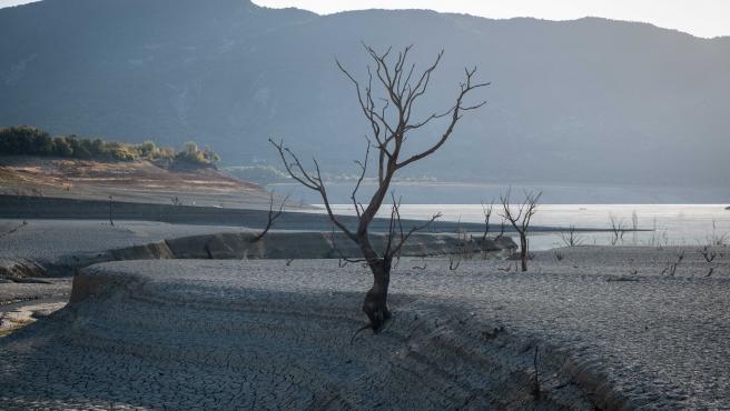 Tras meses sin lluvias y una intensa campaña de riegos, los ecosistemas fluviales de la zona están en peligro.