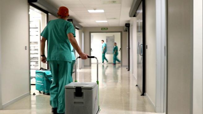 Valencia.- La Fe bate su propio récord de trasplantes cardíacos con once intervenciones en un mes