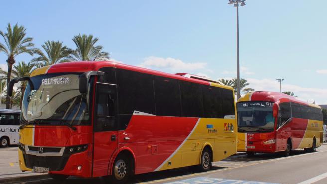 Autobuses del TIB.
