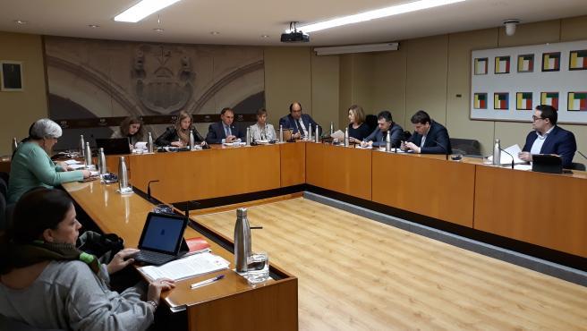 El consejero de Desarrollo Autonómico, José Ignacio Castresana, comparece en el Parlamento para explicar actuaciones ante Brexit y aranceles de Estado Unidos