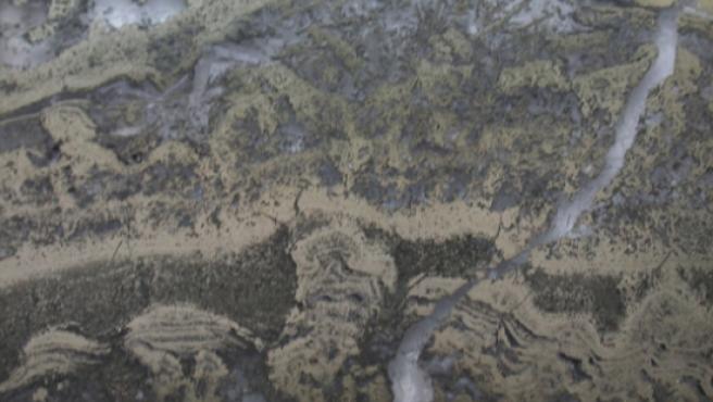 Estas rocas de la región de Pilbara, en Australia, contienen los fósiles de microbios más antiguos conocidos, de 3.500 millones de años de antigüedad.