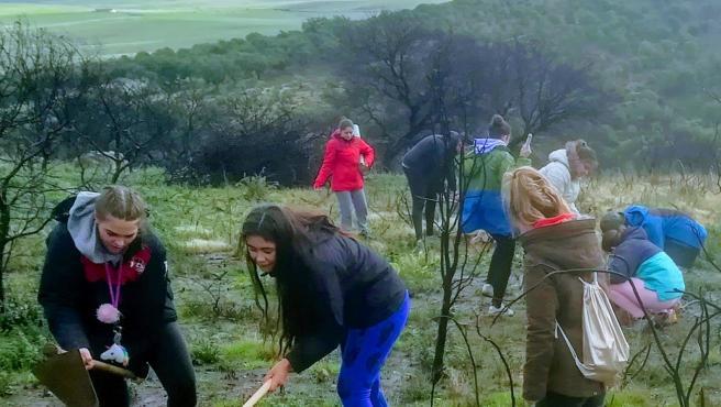 Vlountarios de Natura 2000 siembran plantones de encina en La Sierrilla de Cáceres