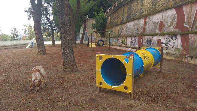 Un perro junto al túnel de agility en el área de esparcimiento del paseo Rey Juan Carlo I