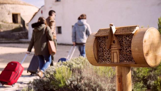 El primer hotel para abejas de la cadena Bee&Bee