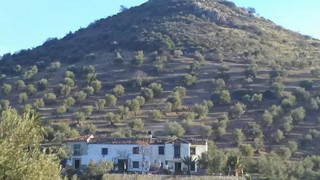 Vista del cortijo Cerro Libertad