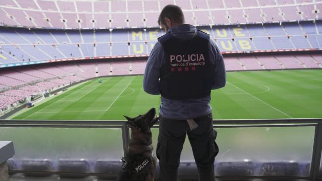 La unidad canina de los Mossos d'Esquadra en el Camp Nou