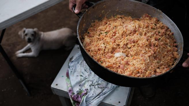 'Arroz a la valenciana' para perros abandonados