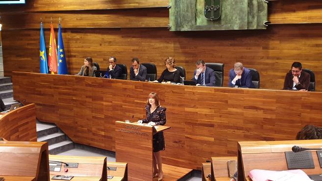 Ana Cárcaba, en el debate de totalidad
