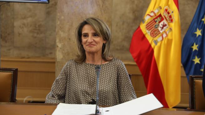 La ministra para la Transición Ecológica en funciones, Teresa Ribera, en una imagen de archivo