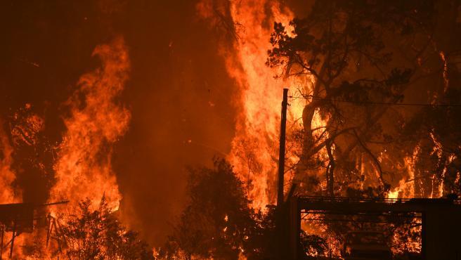 Las llamas se extienden en una zona boscosa en Australia.