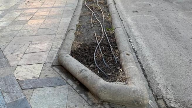 """El PP critica la """"falta de mantenimiento"""" de los jardines en la capital"""