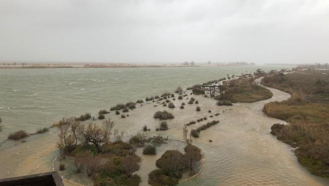 Inundaciones en la zona del delta del Ebro por la borrasca 'Gloria'.