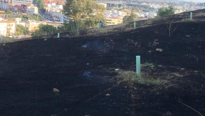 Nuevo incendio en la ladera del Carambolo