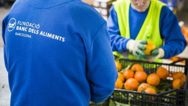 El almacén del Banco de Alimentos de Mercabarna recoge en 2019 1,3 millones de kilogramos de alimentos frescos para personas vulnerables de Barcelona