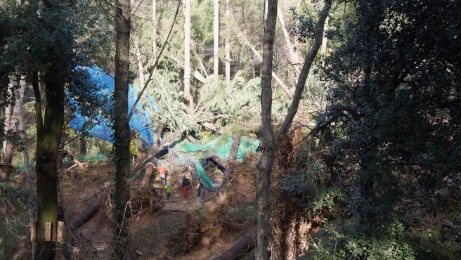 Desperfectos en el parque de ocio La Selva de l'Aventura, a consecuencia del temporal 'Gloria'.