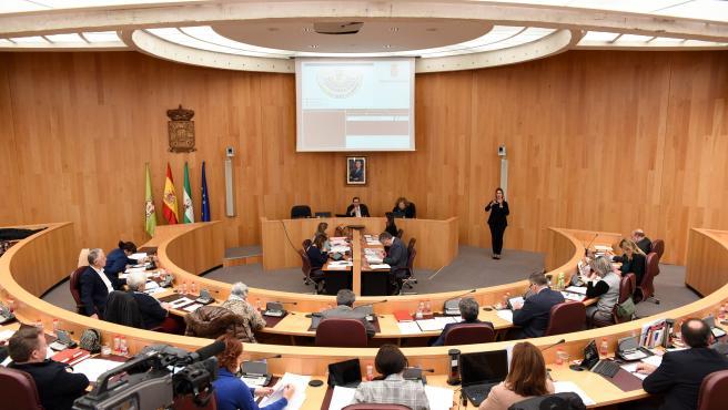 Imagen del pleno celebrado en la Diputación de Granada