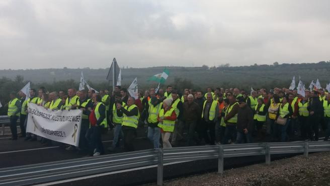 Jaén.- Olivareros colapsan las carreteras principales de la provincia para exigir precios justos para el aceite de oliva